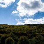 Οικολογία: Όταν μπερδεύεται η κάσα, με τα πράσα