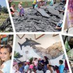 Εβδομάδα Ευρωπαϊκών Γεωπάρκων- Πρόγραμμα εκδηλώσεων στη Λέσβο